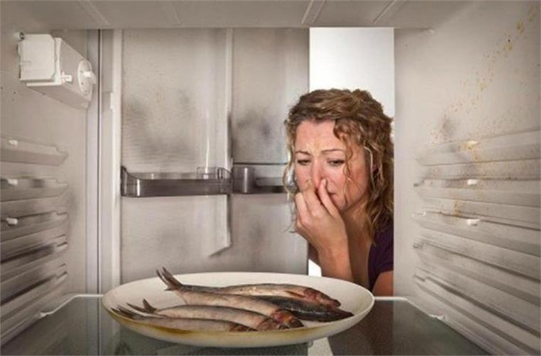 Thực phẩm để trong tủ lạnh nhanh hư hơn bình thường